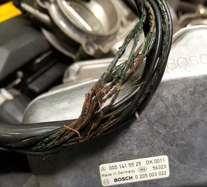 mercedes wire deterioration tech news autobahn performance wire harness news at gsmx.co